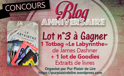 Lot 03 Blog Annif