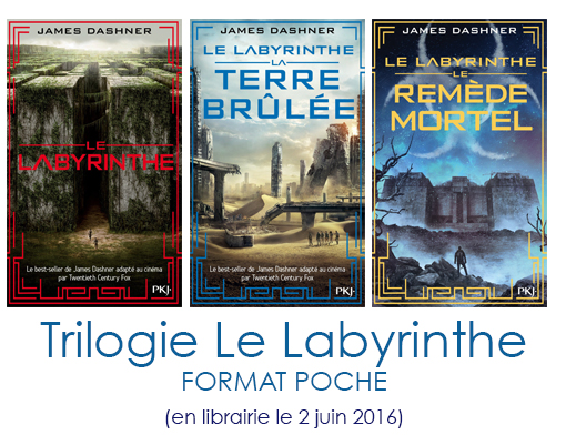 Le Labyrinthe - Format poche